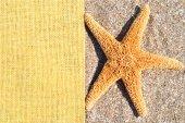Starfish on the sand and sackings  — Stock Photo