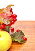 Red viburnum berries in the glass and an apple — Stock Photo