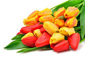 Bunch of fresh red and yellow tulips  — Stock Photo
