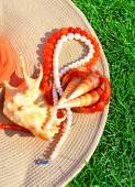 Elegant hat, pearl necklace, beads, seashells on the grass — Stock Photo