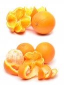 Ripe oranges — Stock Photo