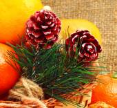 Christmas pine twigs with pine cones and tangerines on christmas — ストック写真