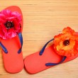 Red flip-flops, slippers with flowers on the wood — Stock Photo #64744863
