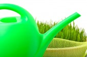 Plastic watering can and green grass isolated on white — Stok fotoğraf