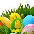 Easter eggs and a yellow chicken in the green grass — Stock Photo #67762485