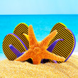Flip flops and starfish on the sand near the ocean — Stock Photo #67763957