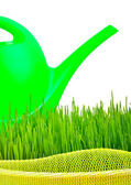 Plastic watering can and green grass — Stock Photo
