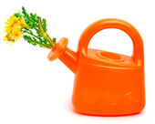 Orange plastic watering can with flowers — Stock Photo