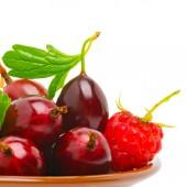 Vinho vermelha groselha e framboesa — Fotografia Stock