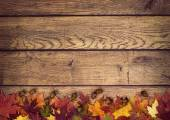 Autumn leaves and acorns on rustic wooden background — Stock Photo