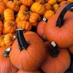 Miniature pumpkins at farmers Market — Stock Photo #58002839