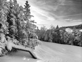 Snowy slope in the mountains — Foto Stock
