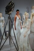 Toast To Tony Ward: Special Bridal Collection — Foto Stock