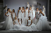 Toast To Tony Ward: Special Bridal Collection — Stockfoto