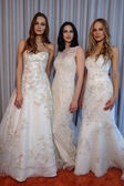 Michelle Roth Bridal Collection — Stockfoto