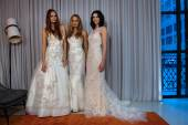 Michelle Roth Bridal Collection — Стоковое фото