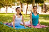 Girls practicing cobra yoga pose — Stock Photo