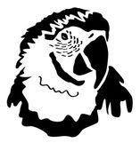 Head ARA - Parrot Psittaciformes — Stock Photo