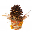 Composition from pine cone, needles and Christmas decorations in — Stock Photo #59194383