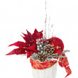 Composition from Poinsettia Plant with branches, cones, ribbons — Stock Photo #59194527