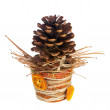 Composition from pine cone, needles and Christmas decorations in — Stock Photo #60293297