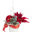 Composition from Poinsettia Plant with branches, cones, ribbons — Stock Photo #60293305