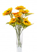 Composition from sunflowers in glass vase isolated on white back — Stock Photo