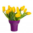 Yellow tulips in lilac vase isolated on white background. — Stock Photo #67400825