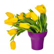 Yellow tulips in lilac vase isolated on white background. — Stock Photo #67400843