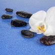 Black spa stones and white orchid flowers over blue background. — Stock Photo #67480483