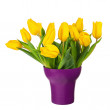 Yellow tulips in lilac vase isolated on white background. — Stock Photo #68848373