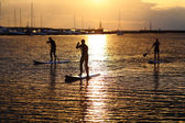 Stand-up paddler silhouettes at sunset — Stock Photo