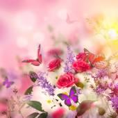 Delicate rozen en vlinder — Stockfoto