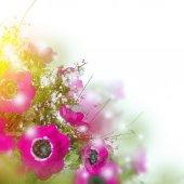 Poppy flowers and foliage card — Stock Photo