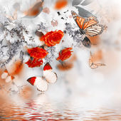 Bouquet of delicate roses and butterfly — Stock Photo