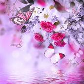 Bukett av känsliga rosor och fjäril — Stockfoto