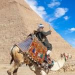 Bedouin seats camel — Stock Photo #65635077
