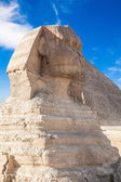 Profile of the Great Sphinx — Stock Photo