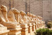 Avenue of the ram-headed Sphinxes — 图库照片