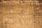 Old egypt hieroglyphs on the stone — 图库照片