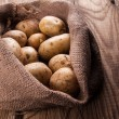Harvest potatoes in burlap sack — Stock Photo #71721509