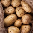 Harvest potatoes in burlap sack — Stock Photo #71721669