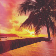 Tropical sunset — Stock Photo #57806519