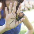 Spider and the girl's palm — Stock Photo #59959523
