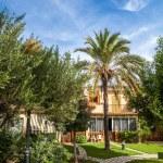 Tropical classical spanish villa with beautiful garden — Stock Photo #60775897