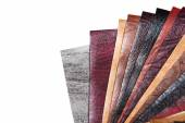 Color samples of different leather — Stock Photo