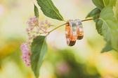 Two wedding golden rings on branch — Fotografia Stock