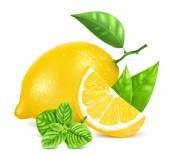 Fresh lemons with leaves and mint. — Stock Vector