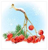 Christmas snow background with rowan. — Stock Vector