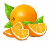 Oranges mûres fraîches — Vecteur